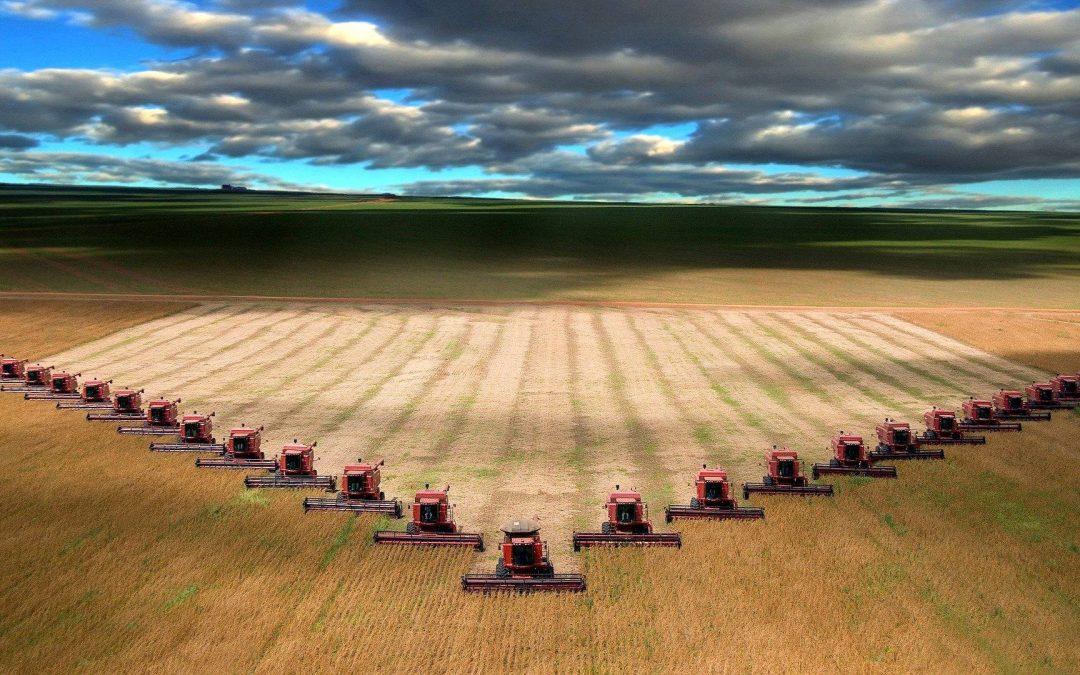 ¿El futuro de la agricultura y la alimentación?