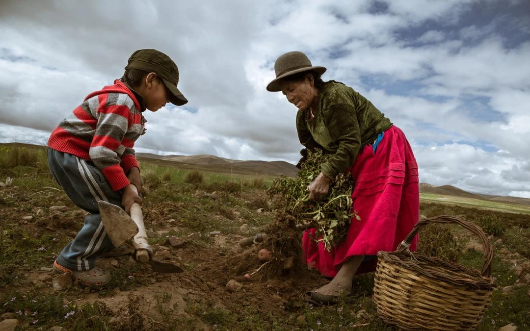 Inseguridad alimentaria en América Latina